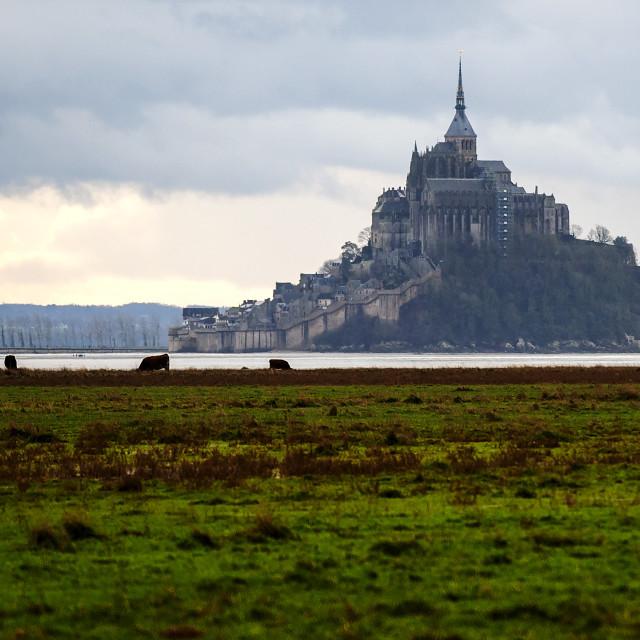 """""""Winter time Mont Saint Michel"""" stock image"""