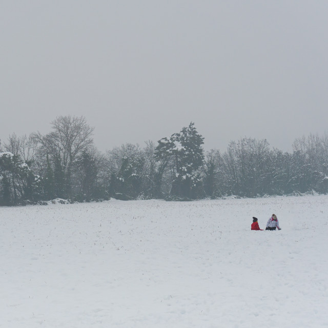 """""""Two little boys play in a snowy meadow on a winter day"""" stock image"""