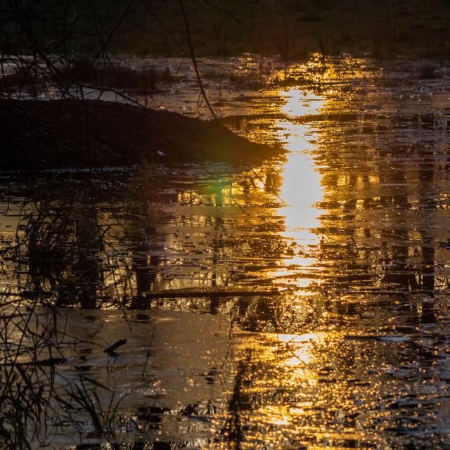 """""""Sunset on ice"""" stock image"""