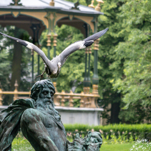 """""""Great Blue Heron taking off from fountain statue"""" stock image"""
