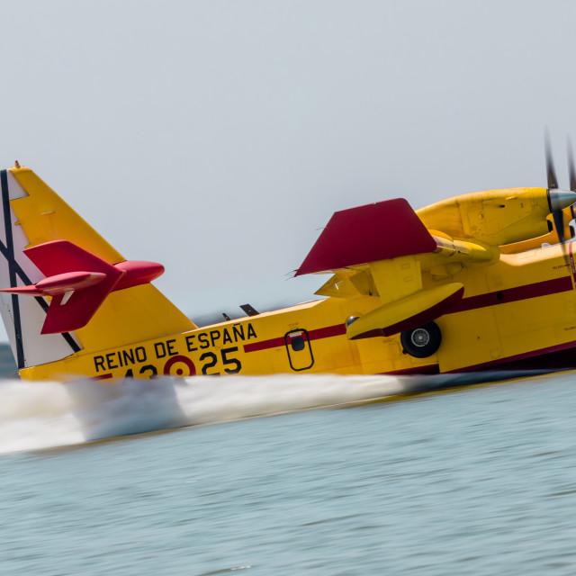 """""""Canadair CL-215 4325 43 grupo"""" stock image"""