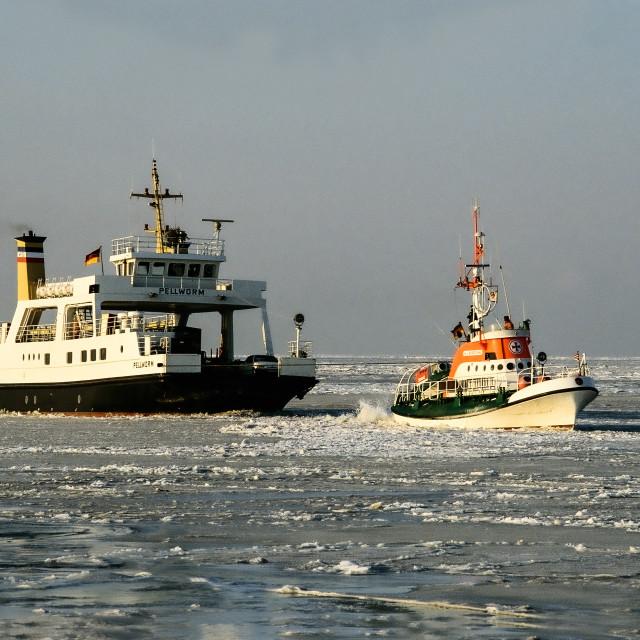 """Eiswinter im Nordfriesischem Wattenmeer"" stock image"