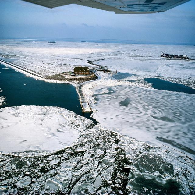 """""""Winter auf Hallig Langeness im Nordfriesischem Wattenmeer"""" stock image"""