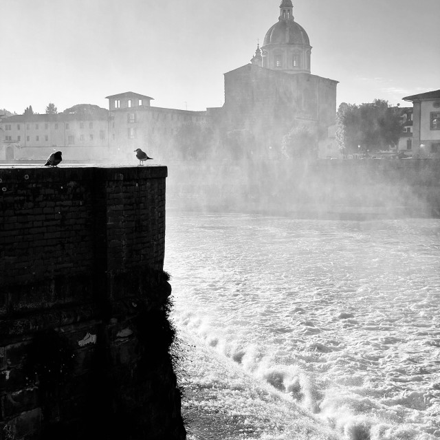 """San Frediano in Cestello, Firenze"" stock image"