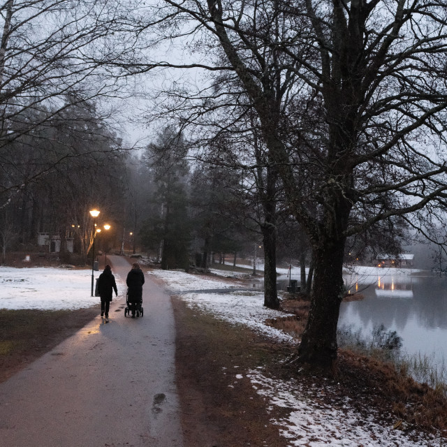 """A walk along the winter lake"" stock image"