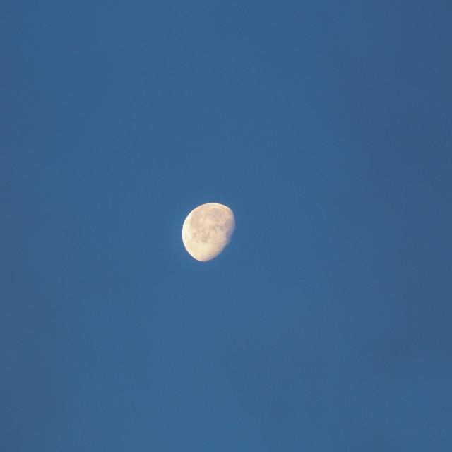"""Jacqui's Moon"" stock image"