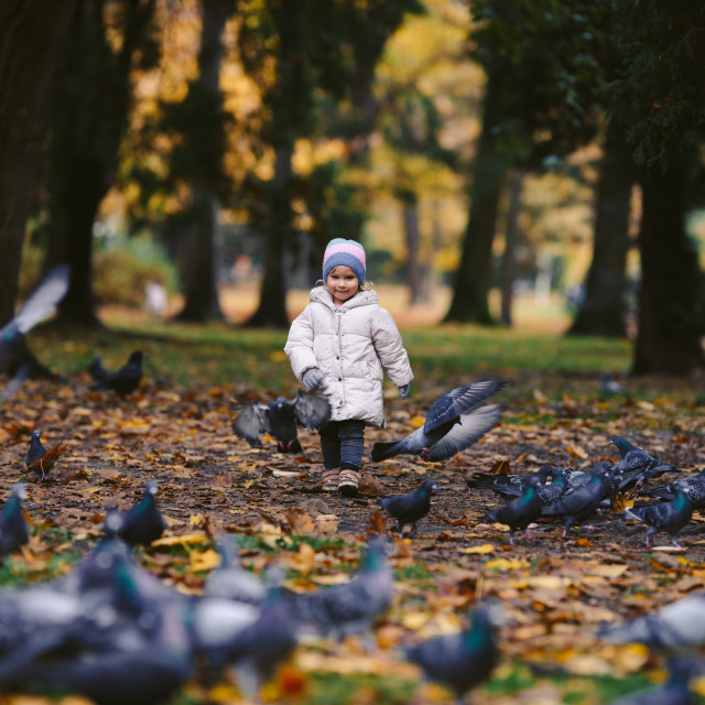 """""""young blonde girl chasing birds in the park, autumn"""" stock image"""