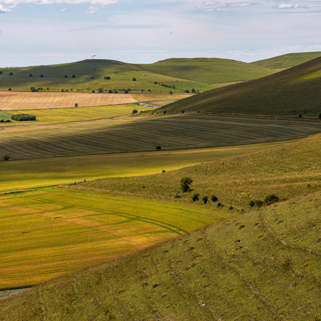 """""""Pewsey Downs"""" stock image"""