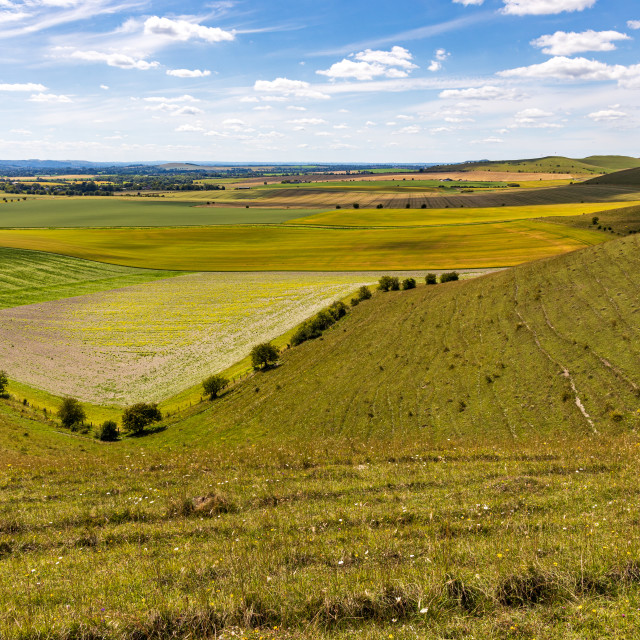 """Vale of Pewsey"" stock image"