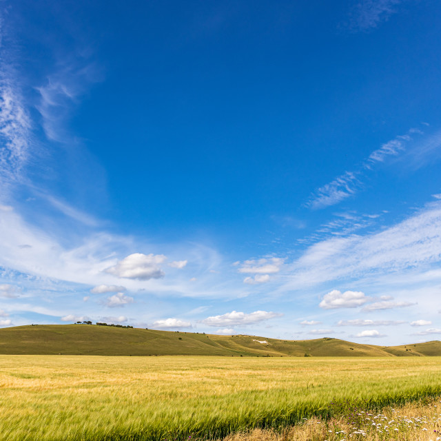 """""""Big sky above the Pewsey Downs"""" stock image"""