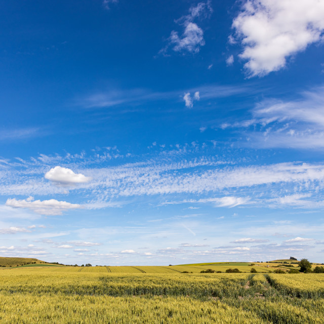 """""""Big sky above the Vale of Pewsey"""" stock image"""
