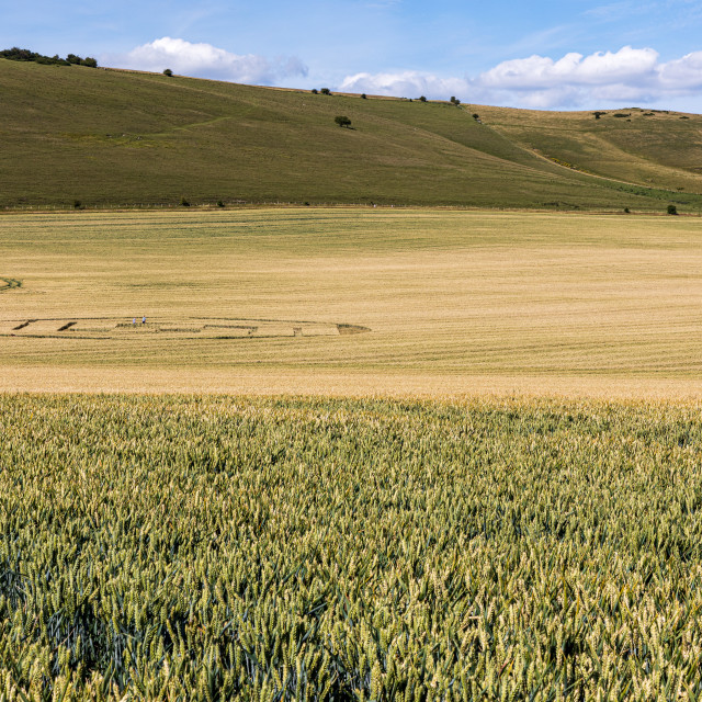 """""""Crop circle and the Alton Barnes White Horse"""" stock image"""