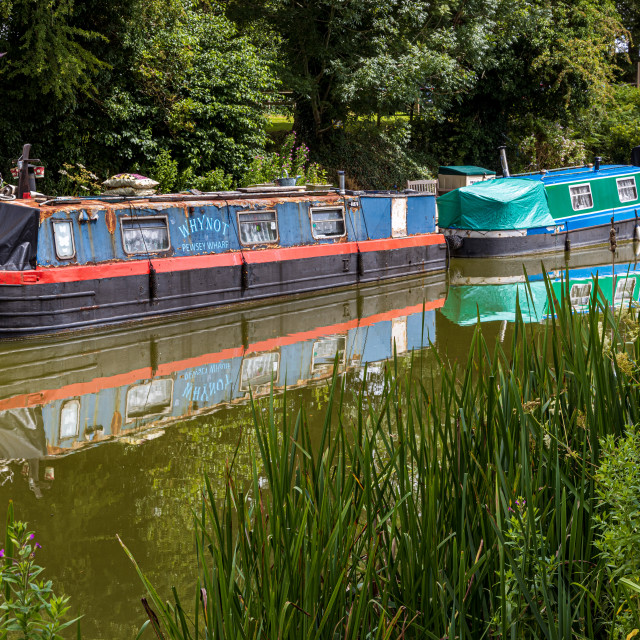 """""""Canal boats, Pewsey Wharf"""" stock image"""