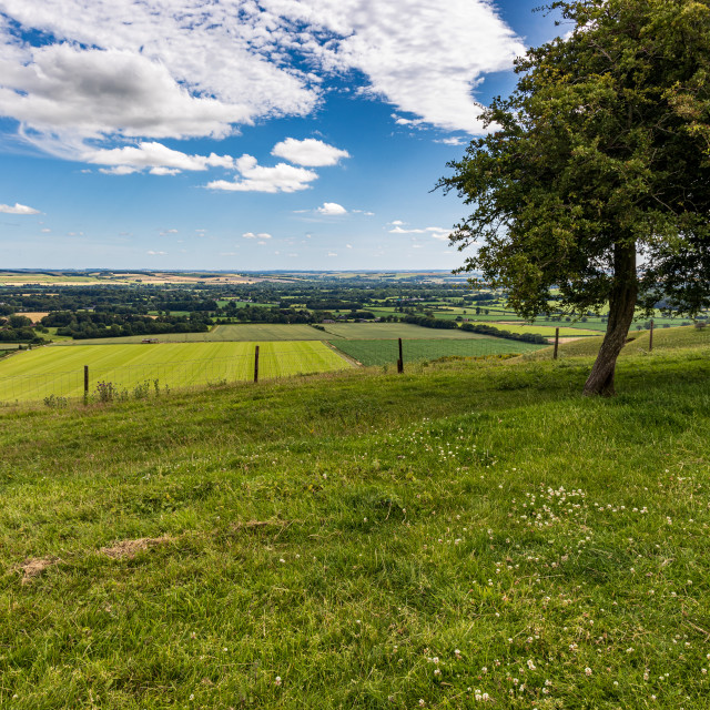 """""""Vale of Pewsey from the Pewsey Downs"""" stock image"""