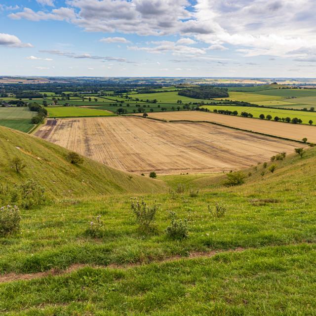 """Flat farmland of the Vale of Pewsey"" stock image"