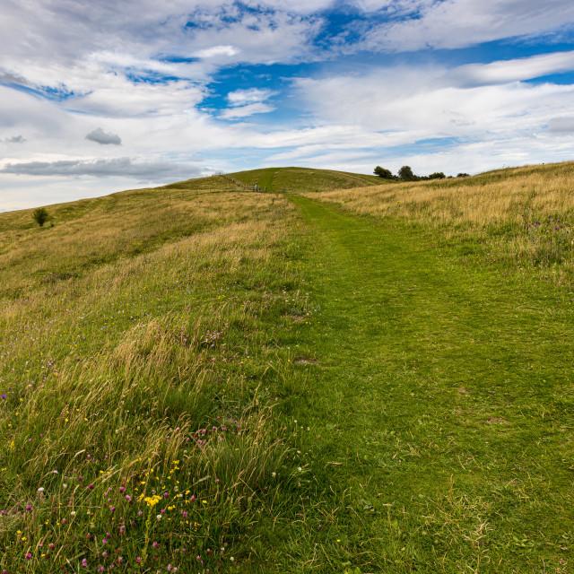 """Tan Hill Way, Pewsey Downs"" stock image"