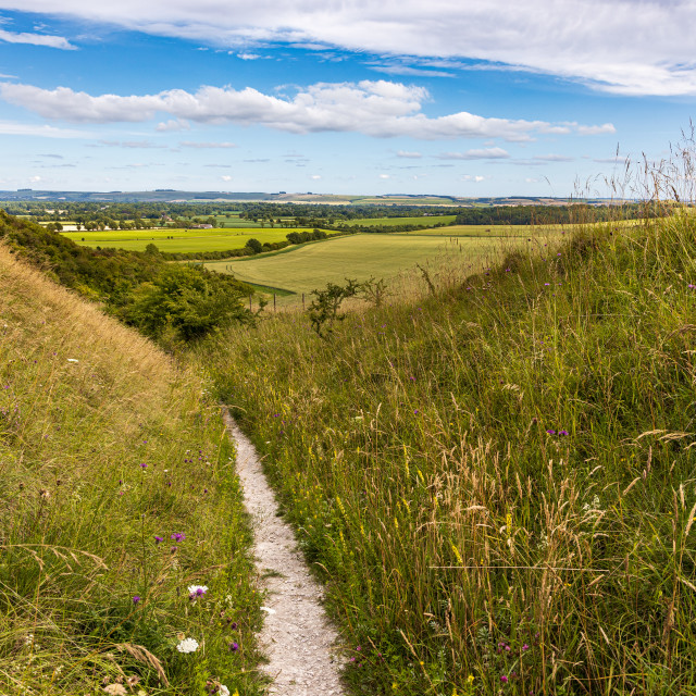 """""""Footpath down from the Pewsey Downs"""" stock image"""