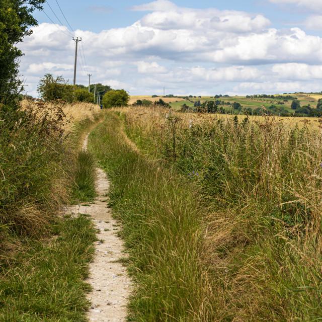 """Ancient byway, Marlborough Downs"" stock image"