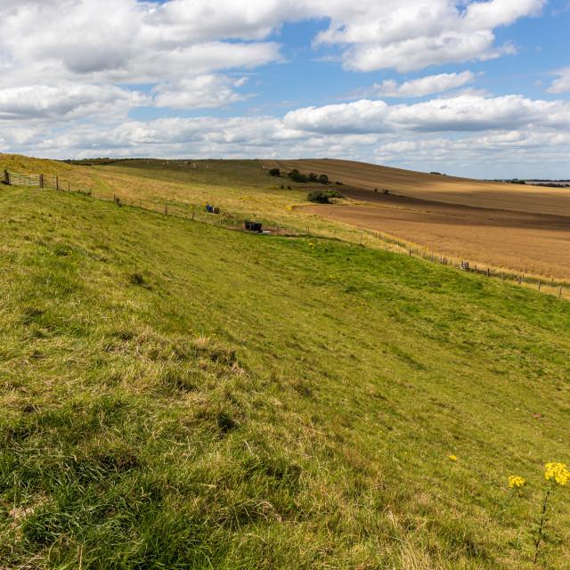 """Marlborough Downs farmland"" stock image"