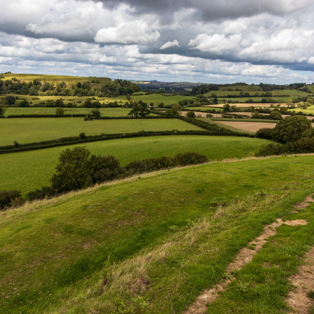 """On Corton Ridge, Wiltshire"" stock image"