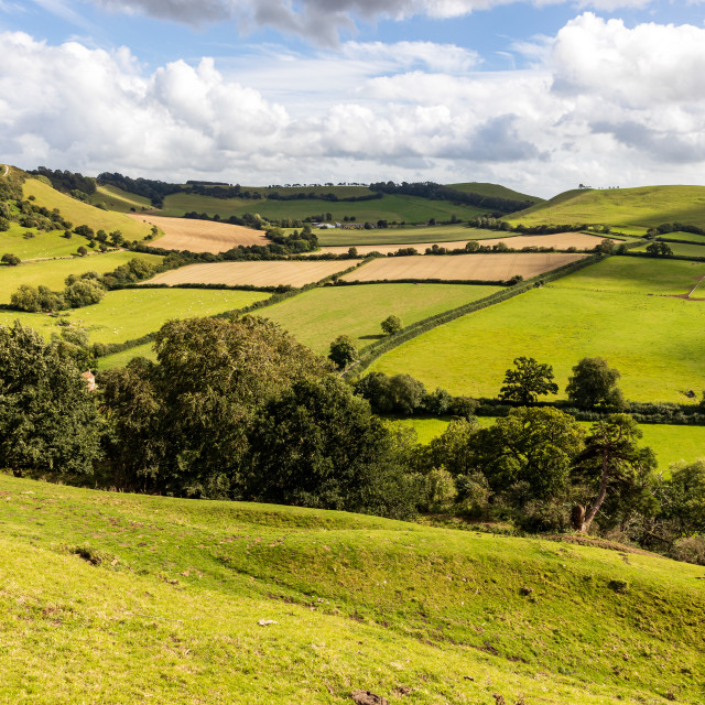 """""""View from Cadbury Castle"""" stock image"""