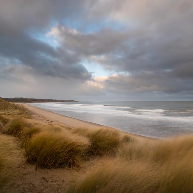 """Alnmouth Bay, Northumberland"" stock image"