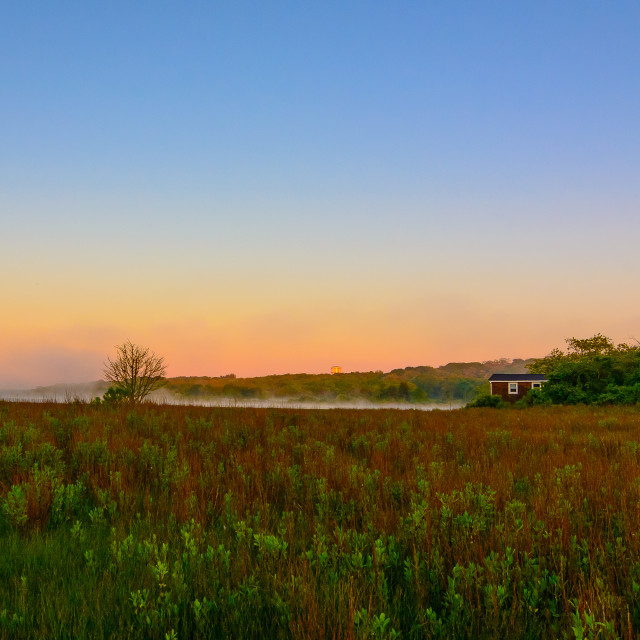 """""""The Shack in the Marsh"""" stock image"""