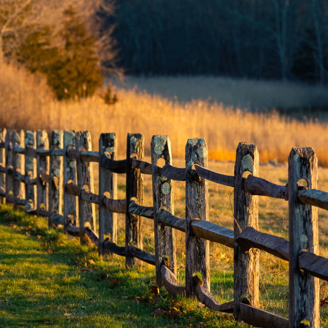 """""""Wooden Fence"""" stock image"""