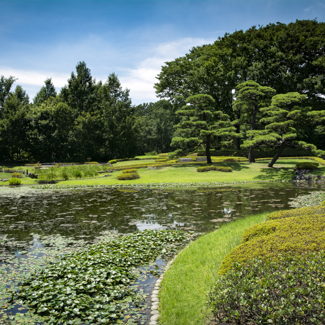 """""""Japanese garden at Imperial palace in Tokyo"""" stock image"""