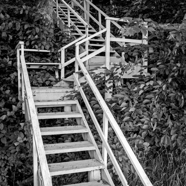 """""""The steps to the harbor"""" stock image"""