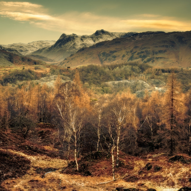 """The Langdale Pikes"" stock image"