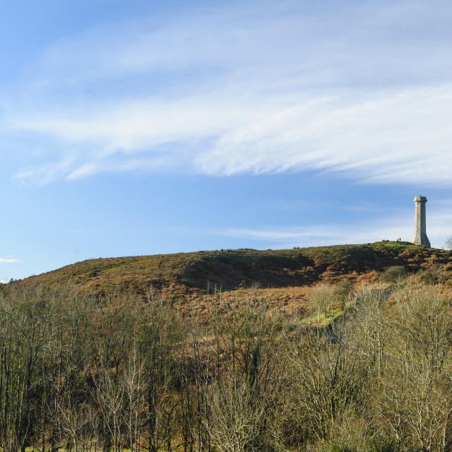 """Hardy Monument, Dorset"" stock image"
