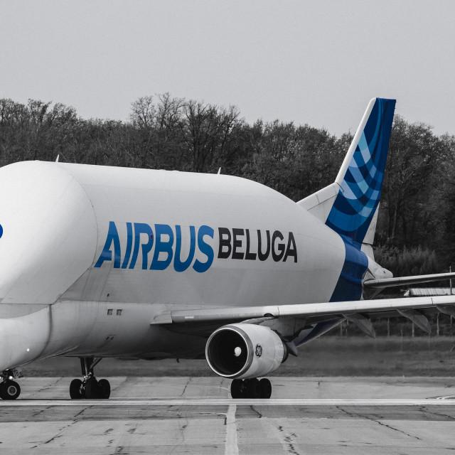 """Airbus Beluga 2 F-GSTB"" stock image"