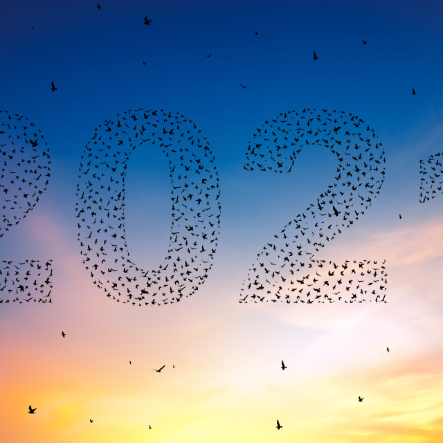 """2021 Happy new year concept. Silhouetteof flying birds at sunse"" stock image"