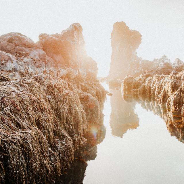 """""""Icelandic Coast 3"""" stock image"""