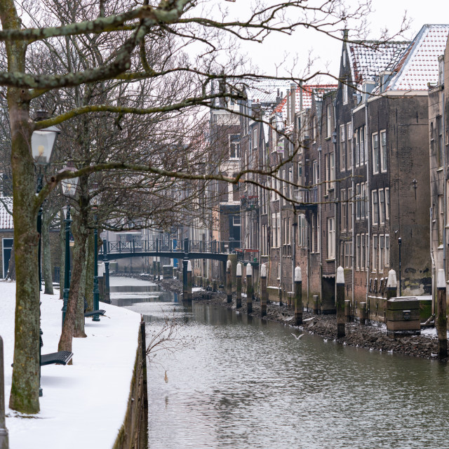 """""""Wijnhaven on a winter day"""" stock image"""