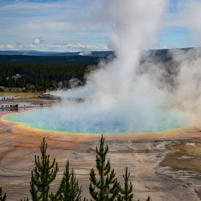"""The Grand Prismatic Spring"" stock image"