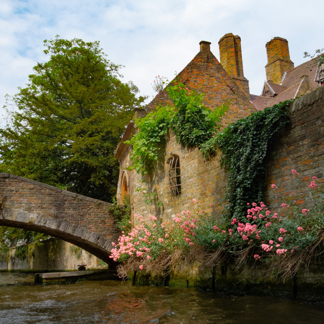 """""""Ancient walls with flowers"""" stock image"""