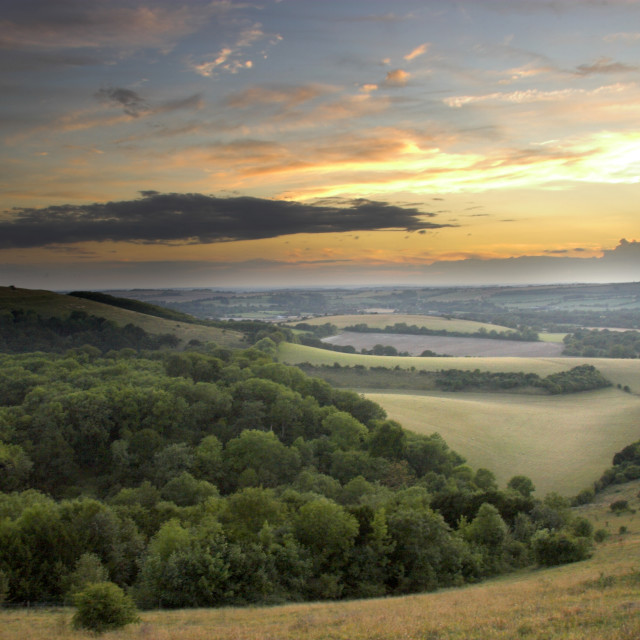 """""""Old Winchester Hill"""" stock image"""