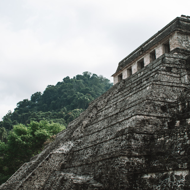"""The Ruins of Palenque, Mexico"" stock image"