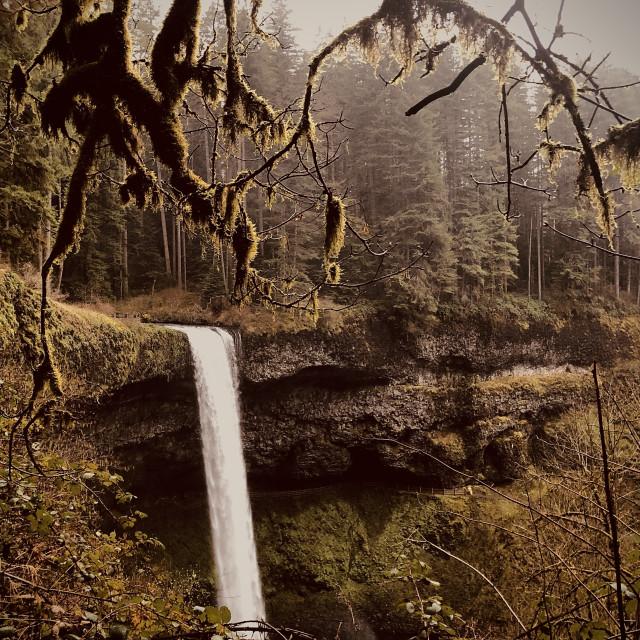 """""""Waterfall Overlook"""" stock image"""
