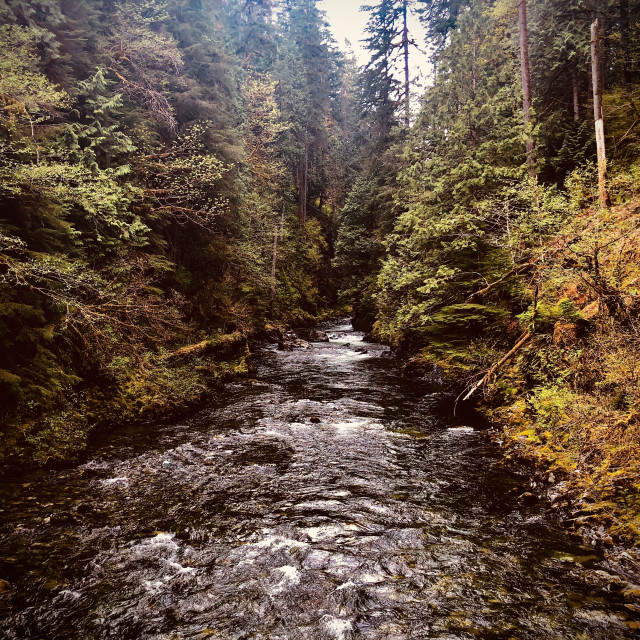 """""""Cold Mountain River"""" stock image"""