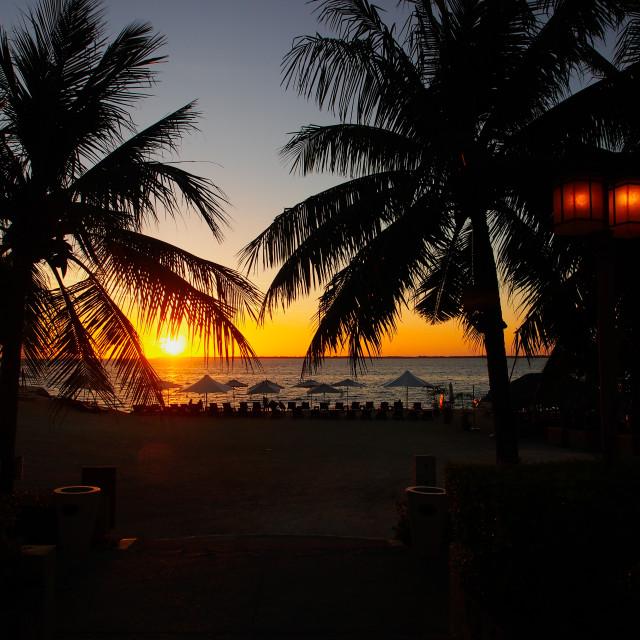 """Cebu Dawn"" stock image"