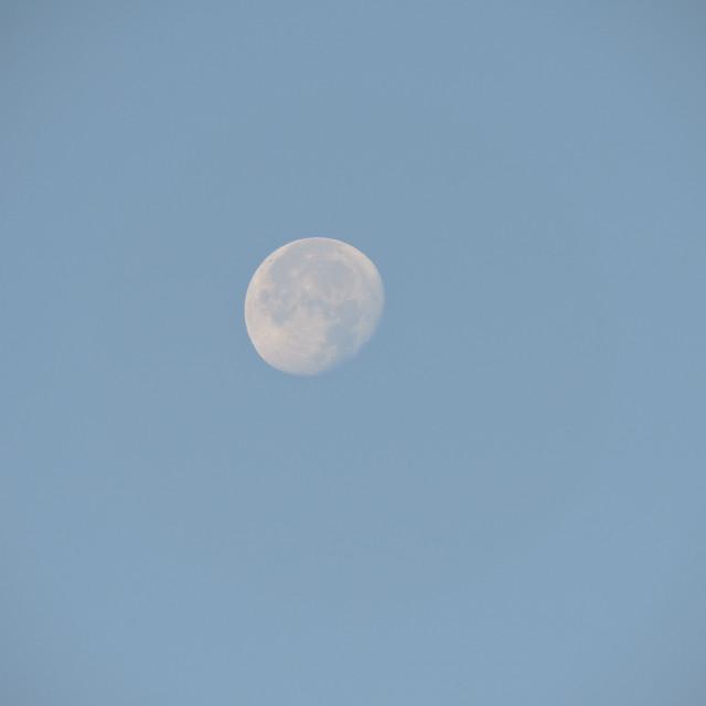 """Morning Moon Middleton Staffordshire 2020"" stock image"