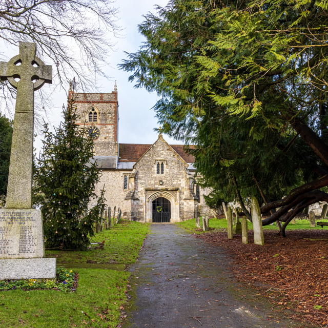 """""""Approach to the Church of St. Peter and St. Paul, Hambledon"""" stock image"""