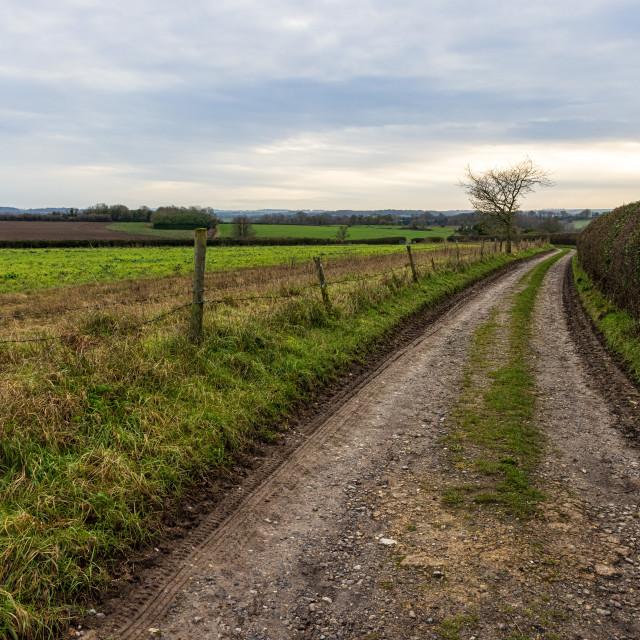 """Hampshire farm track"" stock image"