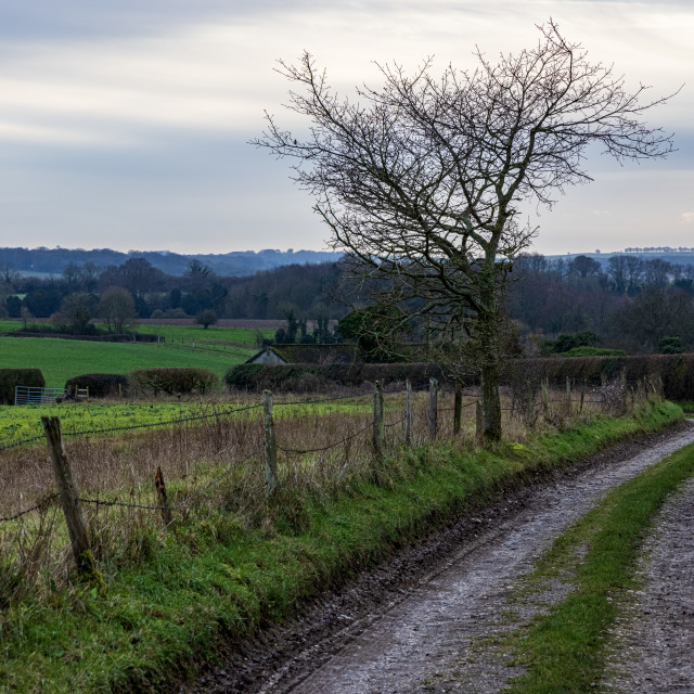 """""""Hampshire byway"""" stock image"""