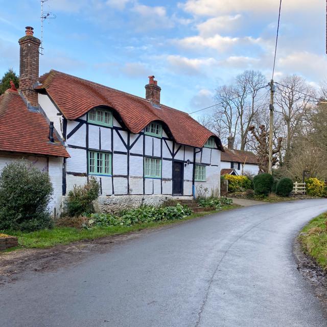 """Upper Farringdon cottage"" stock image"