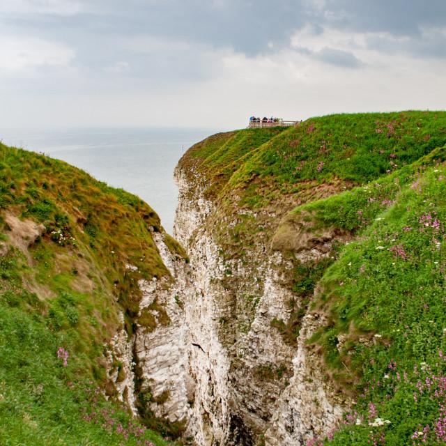 """Spectacular Bempton Cliffs, Yorkshire, England"" stock image"