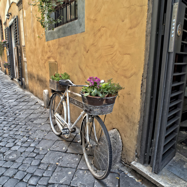 """Bicycle with flowers on a cobbled street in Rome"" stock image"